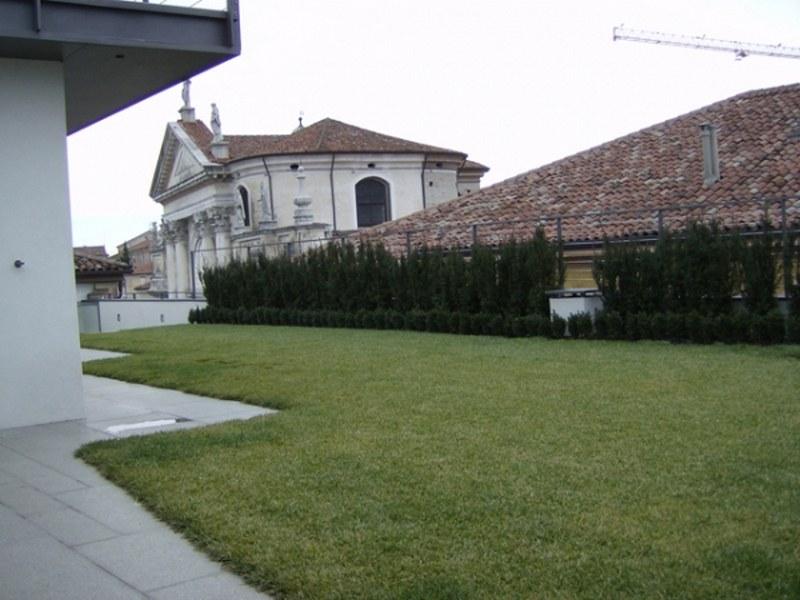 Un giardino finito tra i tetti della citta' d'inverno